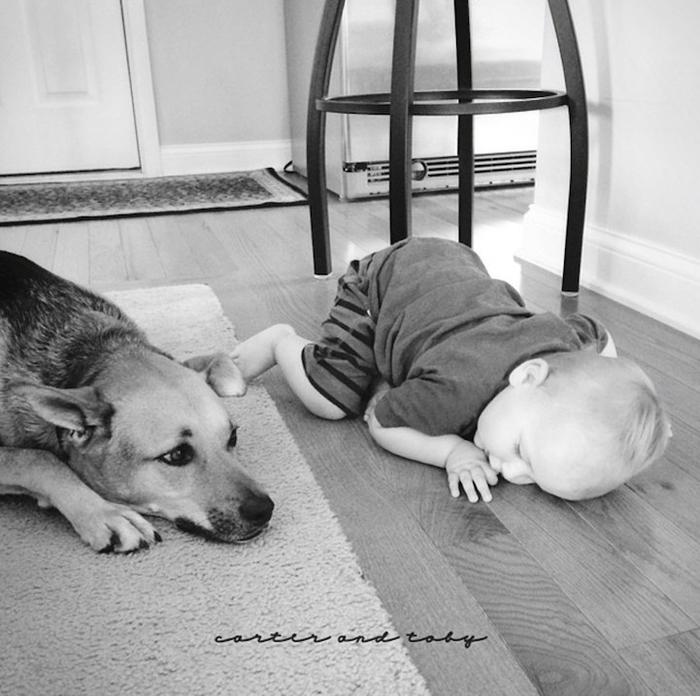 смешные фото детей и собак 11 (700x696, 253Kb)