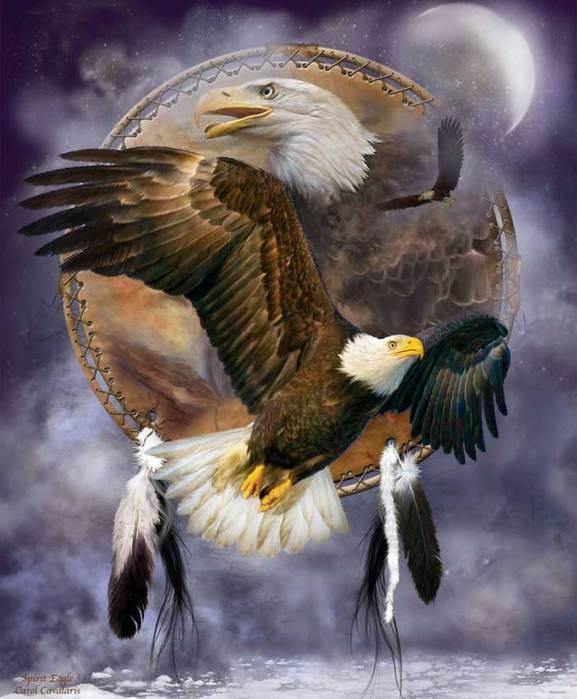 3779070_02_DC_SpiritOfTheEagle_Pic (577x700, 52Kb)