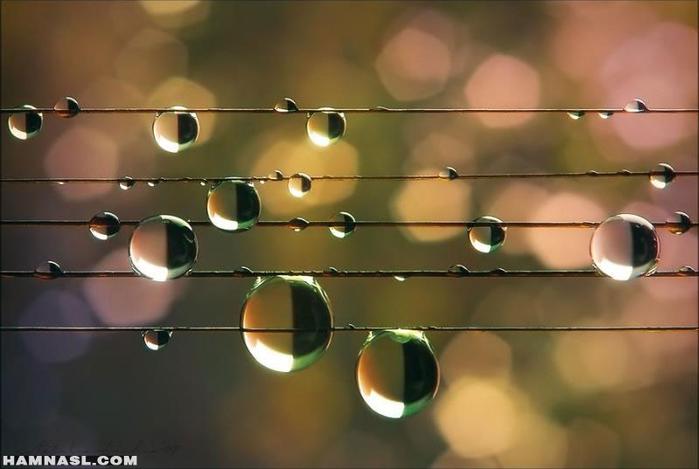Музыка как дождь.. (700x469, 242Kb)