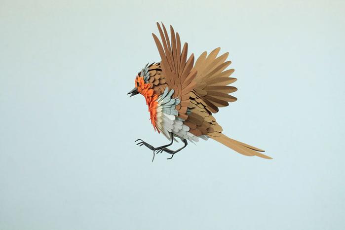 бумажные птицы Диана Белтран Херрера 2 (700x466, 137Kb)