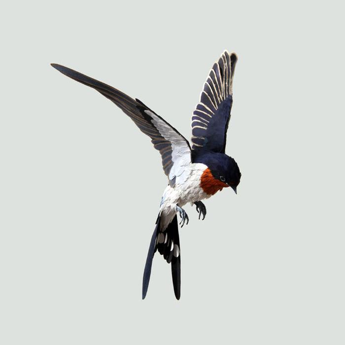 бумажные птицы Диана Белтран Херрера 4 (700x700, 93Kb)