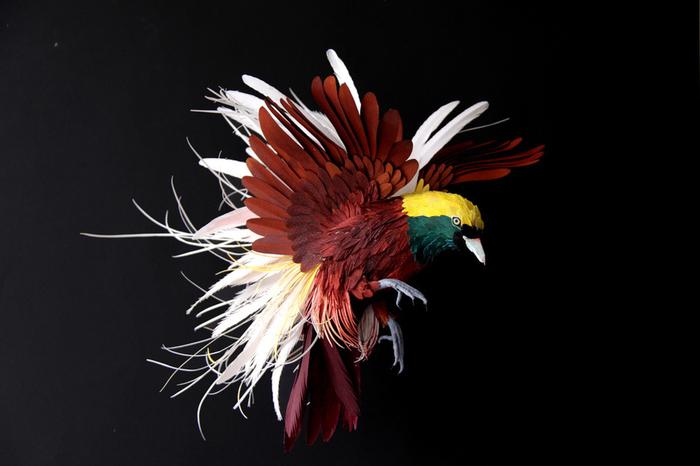 бумажные птицы Диана Белтран Херрера 7 (700x466, 224Kb)