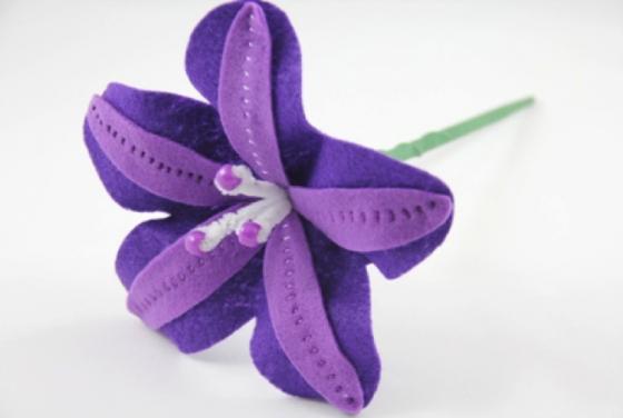 Arco iris de flores de fieltro (1) (560x376, 224Kb)
