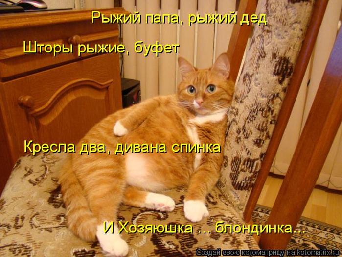 kotomatritsa_8 (700x524, 453Kb)