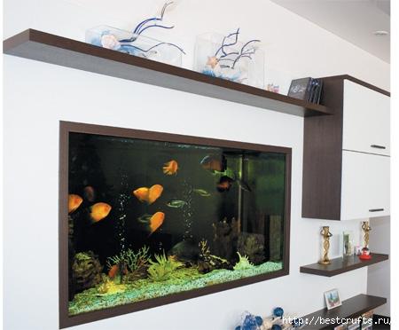 аквариум в интерьере (11) (450x372, 102Kb)