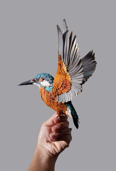 birds-2 (476x700, 119Kb)