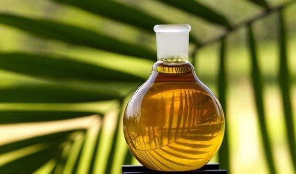 масло (614x355, 163Kb)