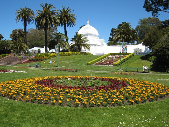 ботанический сад сан-франциско фото 2 (700x525, 567Kb)