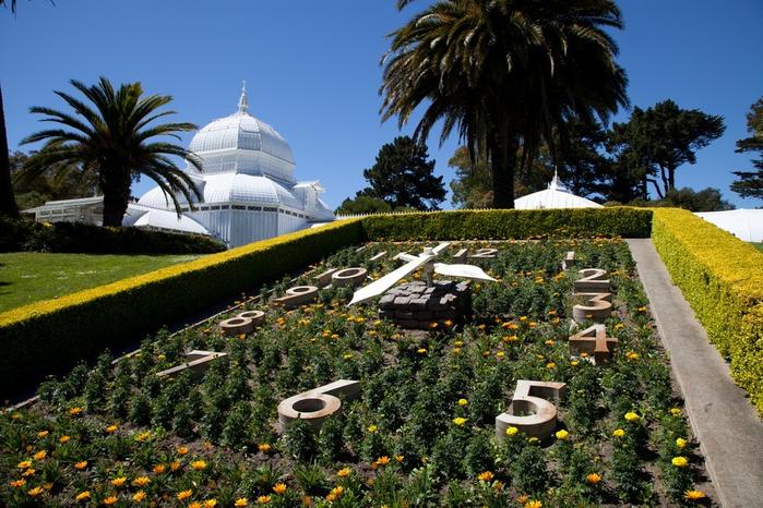 ботанический сад сан-франциско фото 4 (700x466, 461Kb)