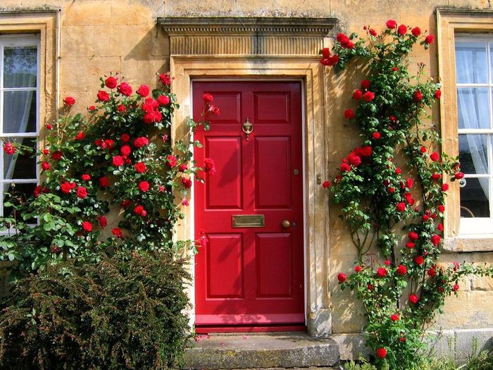 doors_flowers_8 (700x525, 115Kb)