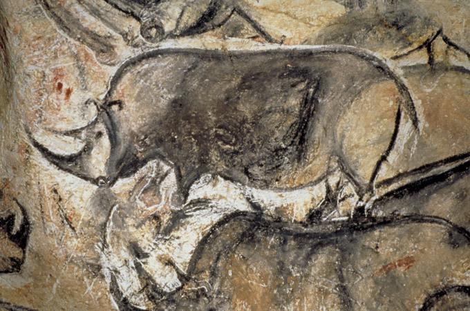 пещера шове франция фото 11 (680x450, 338Kb)