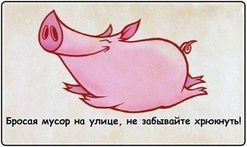 1375669983_frazochki-13 (480x287, 111Kb)