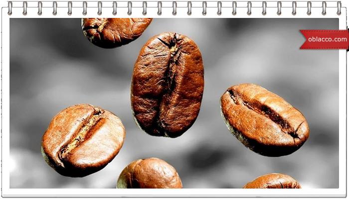 Портрет на кофейном зернышке