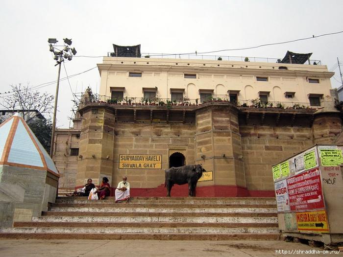 India Varanasi 2014 (20) (700x525, 299Kb)