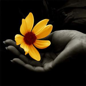 96986109_flower (300x300, 37Kb)