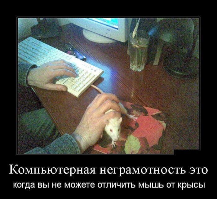 demotivatory_20 (700x642, 322Kb)