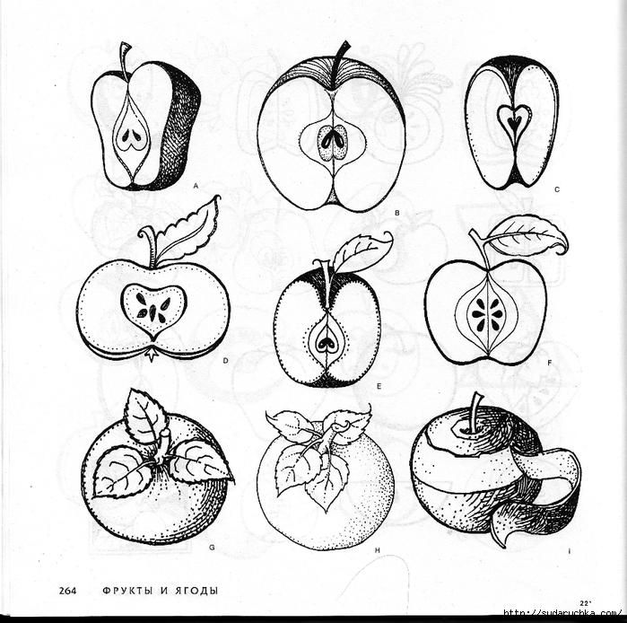 И растения книга по росписи часть 3