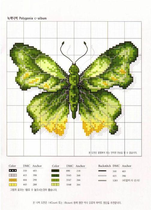 зеленая1 (504x700, 55Kb)