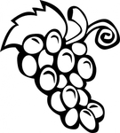 Превью grape-vine-clip-art_f (383x425, 75Kb)