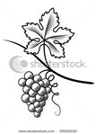 Превью stock-vector-grapes-imitation-engraving-55092220 (338x470, 68Kb)
