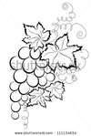 ������ stock-vector-grapes-111134654 (315x470, 75Kb)