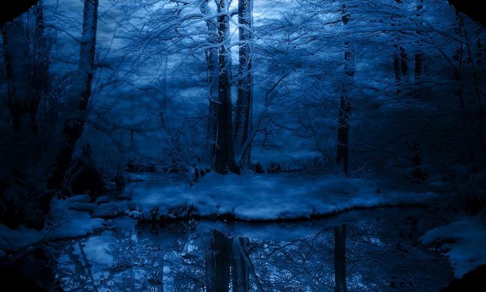 snow-forest-landscape-480x800 (700x420, 570Kb)