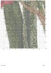 ������ x15_Pag_4-1 (495x700, 315Kb)