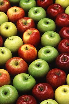apples-250x360xA (240x360, 28Kb)