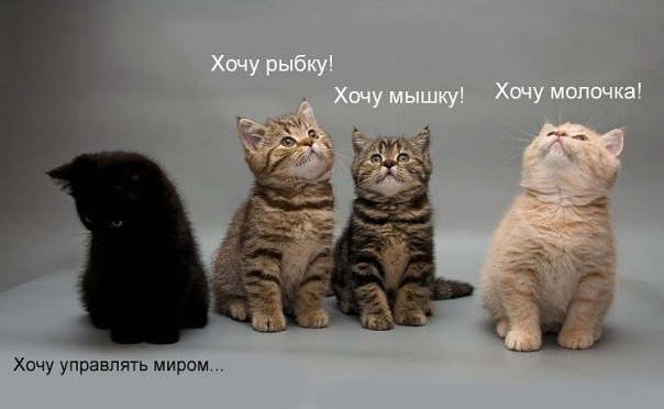 kexufpFxEt0 (604x372, 38Kb)