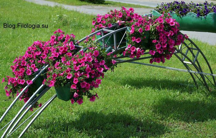 3241858_flowers297 (700x448, 99Kb)
