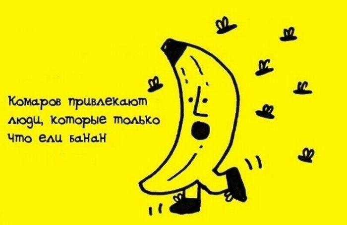 3795585_fakti_v_kartinkah_18 (700x455, 30Kb)
