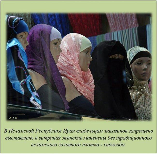 http://img1.liveinternet.ru/images/attach/c/11/115/285/115285155_5.jpg