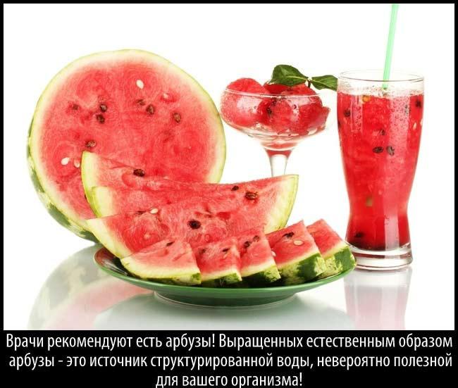 watermelon-7 (650x551, 51Kb)