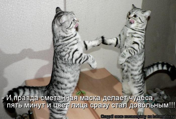 kotomatritsa_K5 (700x472, 262Kb)