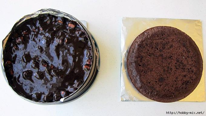 2014-07-08-smores-cake-step6-680x384 (680x384, 167Kb)