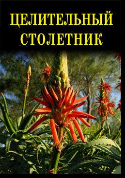 title976536046 (258x366, 191Kb)