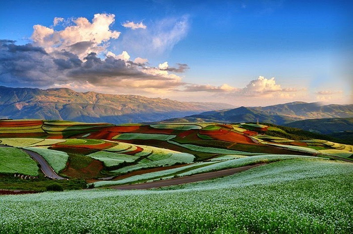 dongchuan-red-soil-2 (700x464, 152Kb)