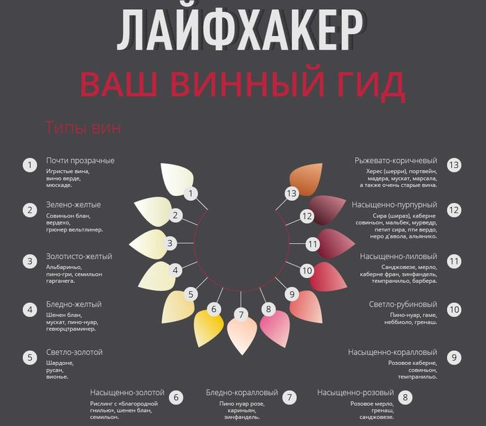 1винный_гид (700x613, 50Kb)