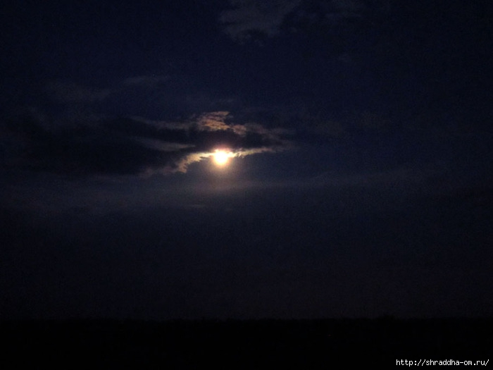 ночное небо (700x525, 109Kb)