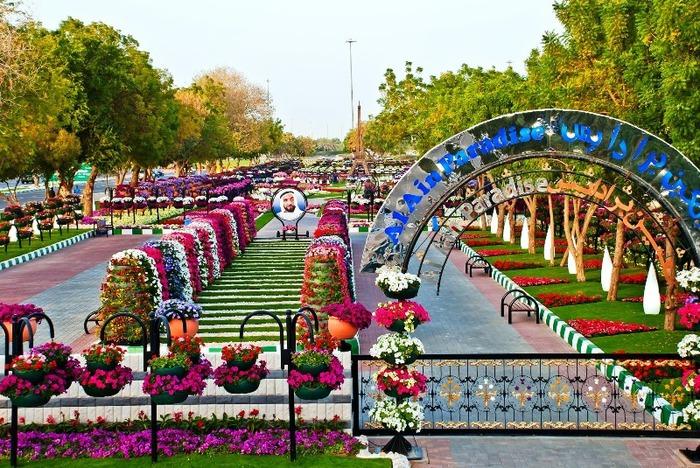 3303834_Al_Ain_Paradise_14 (700x468, 188Kb)