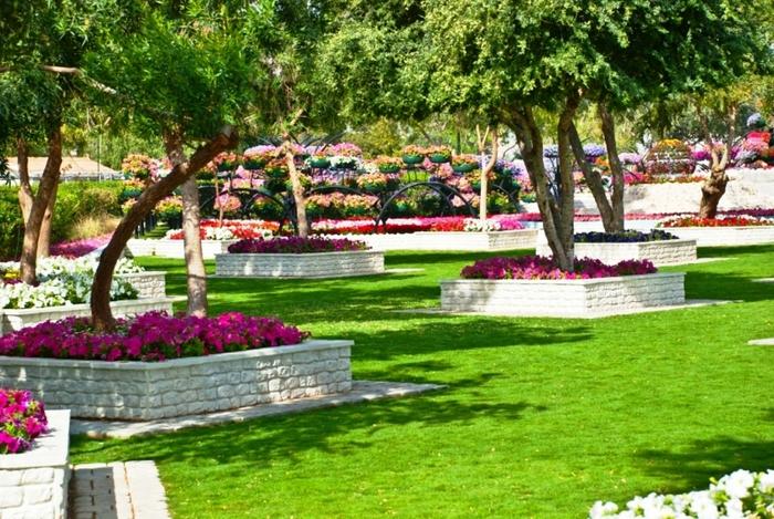 Фото цветы в парке
