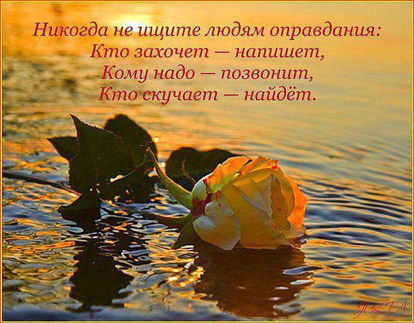 3416556_image_1_1_ (604x472, 71Kb)