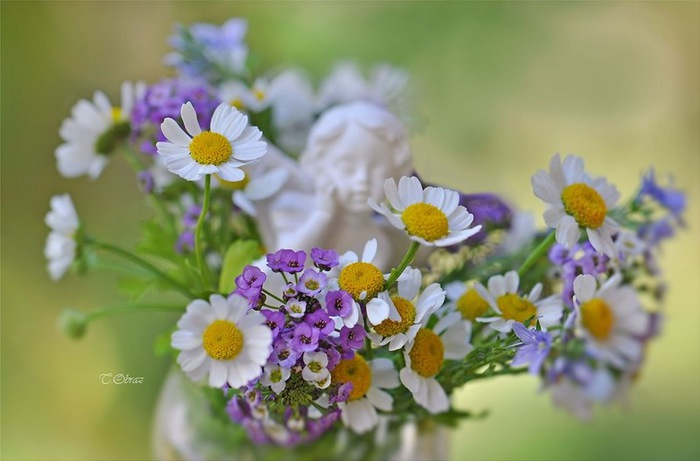 still_life_in_flowers_01 (700x461, 70Kb)