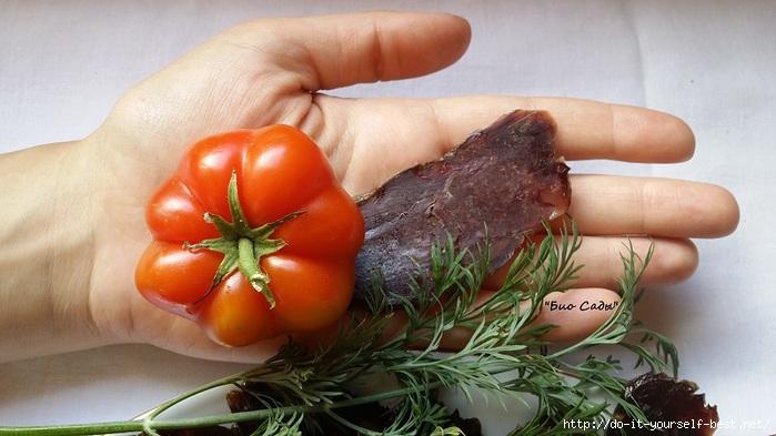 kazi-s-pomidorom (700x393, 166Kb)