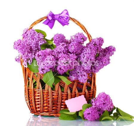 корзина цветы 9 (450x425, 202Kb)