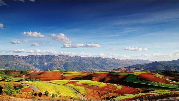 поля Дончуань китай фото 1 (700x396, 312Kb)