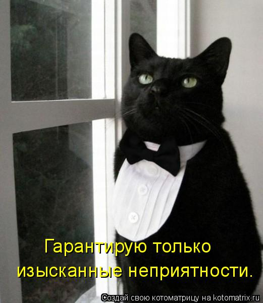 kotomatritsa_7H (521x600, 162Kb)