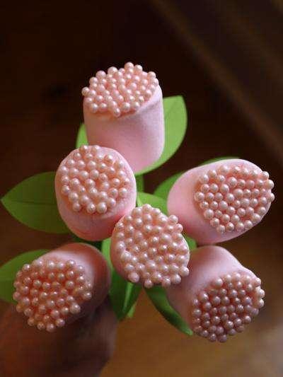 4027137_pinkpeppermintpops_1_ (400x533, 18Kb)