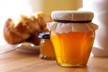 мёд (450x300, 95Kb)