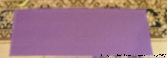 P8100055 (700x242, 117Kb)